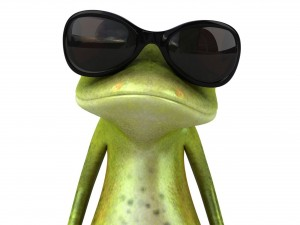 Frog-Sunglasses-Fashion-Face